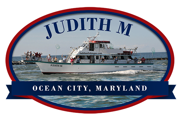 Judith M Fishing Logo